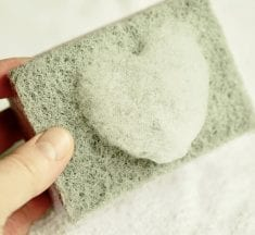 Household microbes: Kitchen Sponge, Board And Towels
