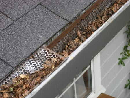 When and How Often Should You Clean the Gutters