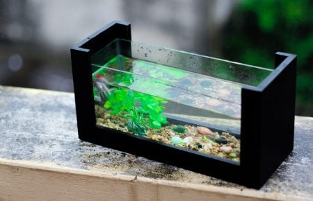 Where to place the fish aquarium in the house?